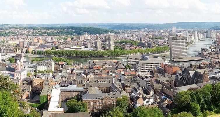 Liège: Pedigree par Georges Simenon