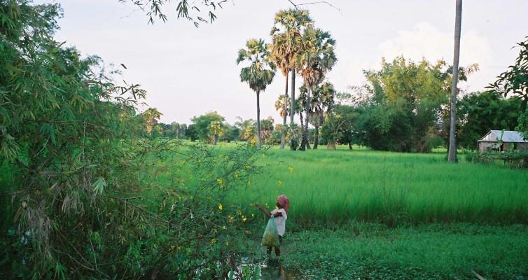 Idées Bouquins, etc… : Cambodge